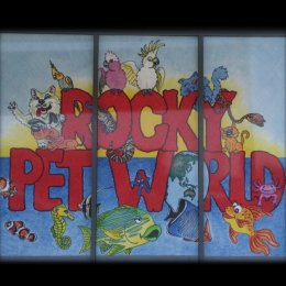 Rocky Pet World